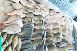 مليار ريال حجم صادرات المملكة من الأسماك والروبيان خلال 2017 - المواطن