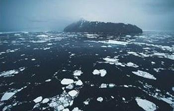 اصغر-كائن-بحري-بالقطب-الجنوبي