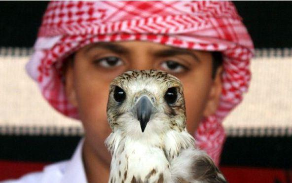 اطلاق سراح قطري اختطف العام الماضي في العراق