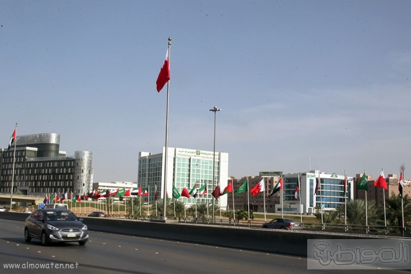 اعلام دول مجلس التعاون (5)
