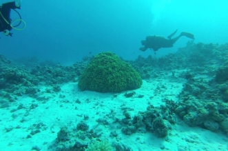 اعماق البحر