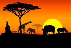 افريقيا 1