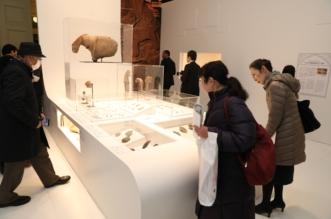 زوار معرض روائع آثار المملكة بطوكيو: لم نكن نعلم أن حضارتكم بهذا التطور والرقي - المواطن