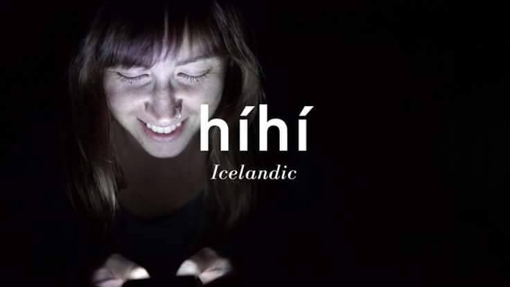 الآيسلندي