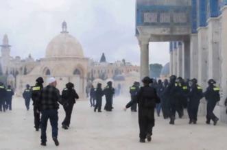 مستوطنون يهود يقتحمون الأقصى وهو خالٍ من المُصلين - المواطن