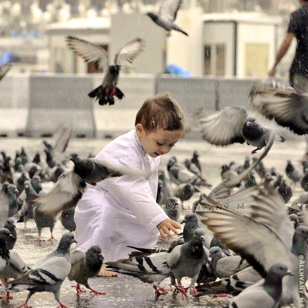 الأمطار على مهبط الوحي وقبلة المسلمين (6)