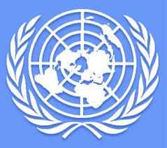 المملكة تفوز بعضوية المجلس الاقتصادي والاجتماعي للأمم المتحدة - المواطن