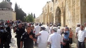 مستوطنون يهود يقتحمون باحات المسجد الأقصى - المواطن