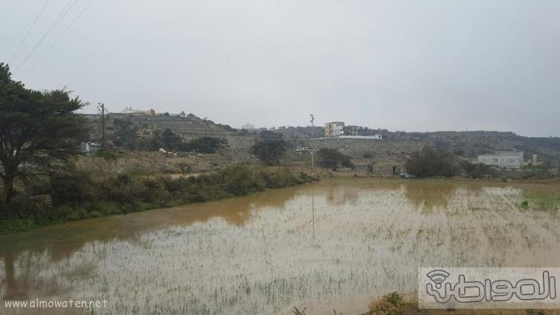 الامطار الغزيرة التي شهدتها قرى شمال عسير11