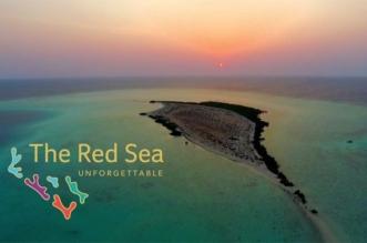 BBC تسلط الضوء على المناطق الأثرية في محيط مشروع البحر الأحمر - المواطن