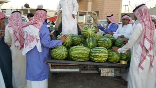 البطيخ (2)