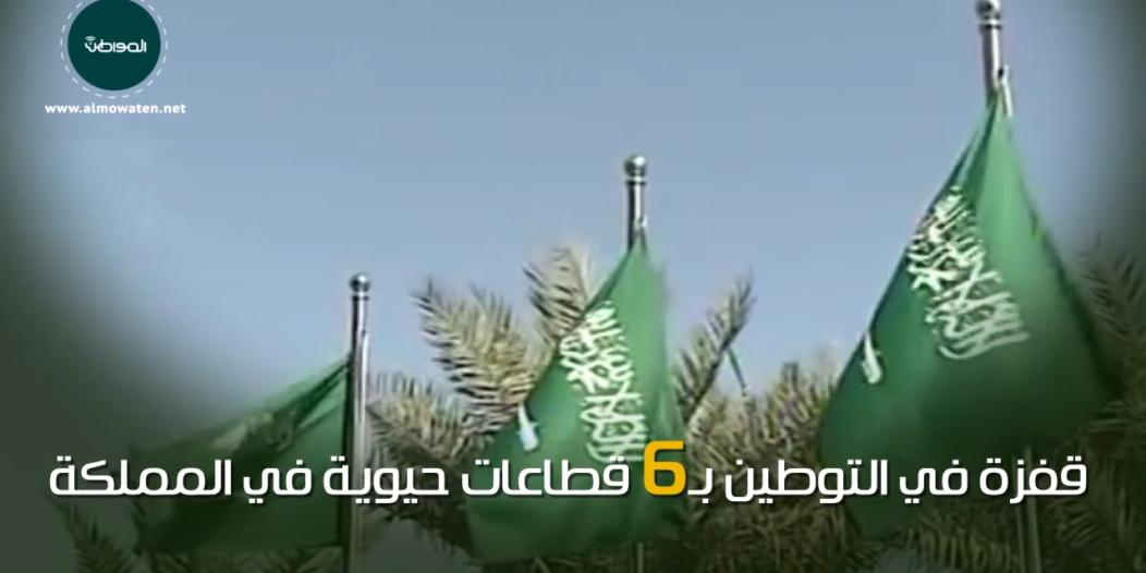 """فيديو جرافيك """"المواطن"""".. المملكة تحقق قفزة في توطين 6 قطاعات حيوية"""
