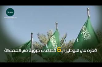 """فيديو جرافيك """"المواطن"""".. المملكة تحقق قفزة في توطين 6 قطاعات حيوية - المواطن"""