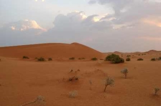 العثور على العامل السوداني المَفْقُود بصحراء الجوف - المواطن