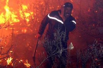 الحرائق تقضي على مساحات شاسعة من الغابات والمحاصيل بالجزائر