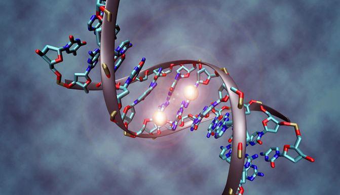 الحمض-النووي