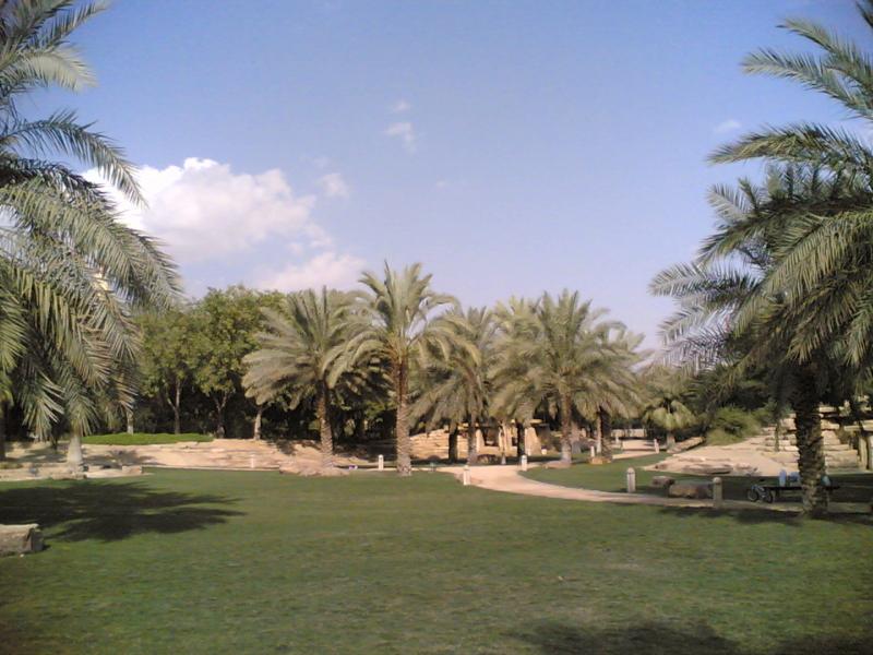 الخريف في الرياض (1)