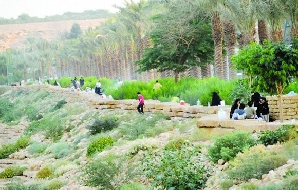 الخريف في الرياض (2)
