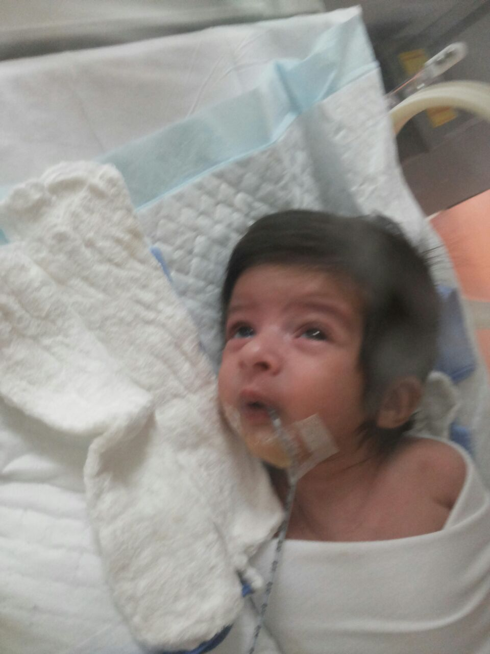 الرضيع طارق (2)