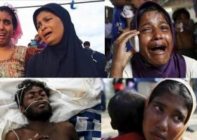 العفو الدولية: ميانمار ارتكبت جرائم ضد مسلمي الروهينجا