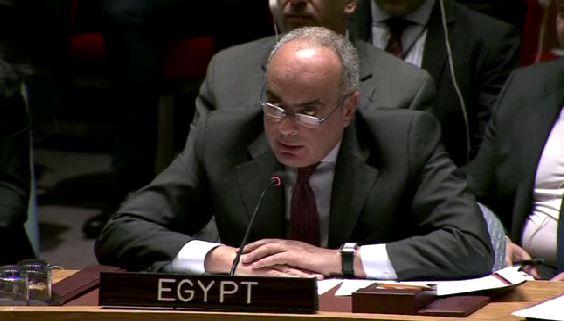 السفير عمرو أبو العطا