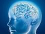عادات تقلل خطر الإصابة بالزهايمر