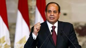 السيسي: شخصان تناولا العشاء بـ50 مليون دولار ويريدان إسقاط مصر - المواطن
