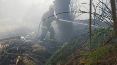 السيطرة على حريق مزرعتين بالعلا  (31195650) 
