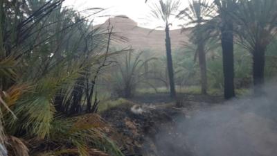 السيطرة على حريق مزرعتين بالعلا  (31195654) 