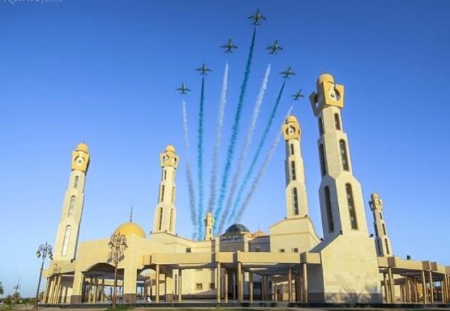 الصقور-السعودية (1)
