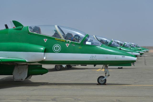 الصقور-السعودية (3)