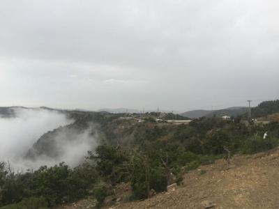 الضباب يعانق جبال منتزه السوده2