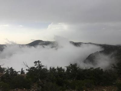 الضباب يعانق جبال منتزه السوده3