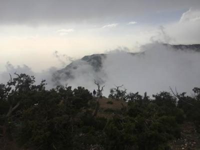 الضباب يعانق جبال منتزه السوده4