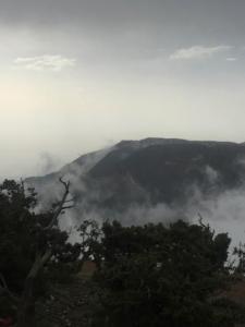 الضباب يعانق جبال منتزه السوده6