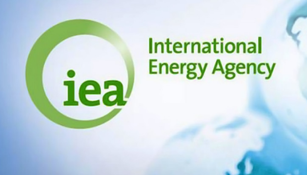 الطاقة الدولية