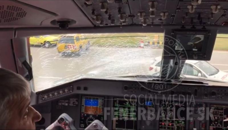الطيور تجبر طائرة فنربختشة المتوجهة إلى مانشستر على هبوط اضطراري 1