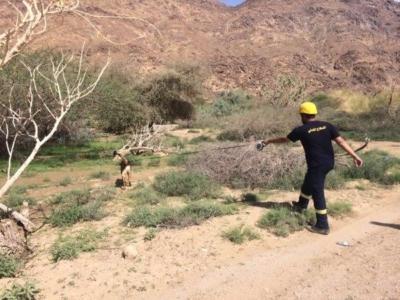 العثور على مفقود وادي نجران بعد 12 يومًا1