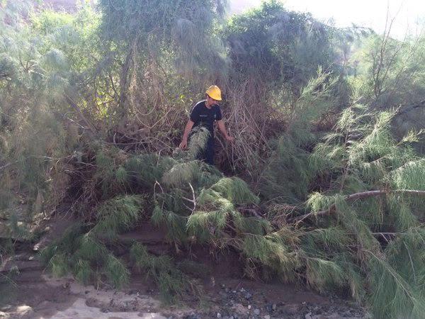 العثور على مفقود وادي نجران بعد 12 يومًا2