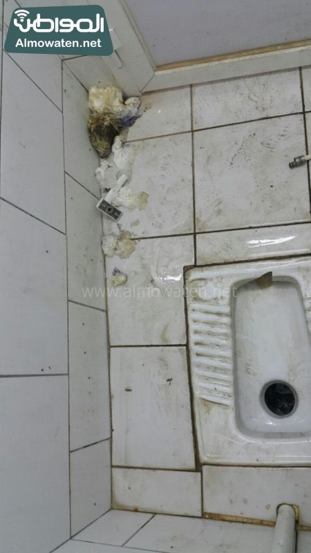 العشوائيّة وغياب النظافة وسيطرة القرود تفسد غابة رغدان بالباحة (1)