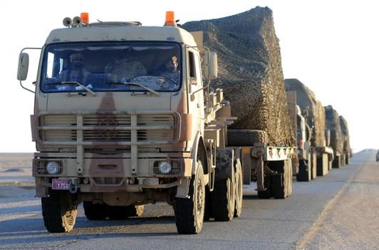 القوات البرية الاماراتية2