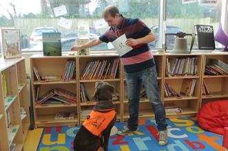 """بالفيديو.. """"فيرني"""" كلب بريطاني يُعلم الطلابَ القراءة والكتابة - المواطن"""