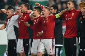 """روسيا وبلجيكا والتشيك يفوزان وديًّا استعدادًا لـ""""يورو 2016"""" - المواطن"""