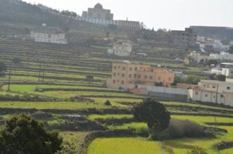 المدرجات الزراعية بعسير تُشكل لوحة جمالية بعد هطول الأمطار - المواطن
