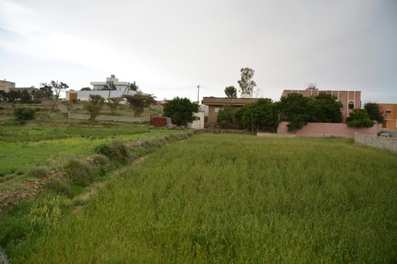 المدرجات الزراعية بعسير تُشكل لوحة جمالية بعد هطول الأمطار (105246682) 