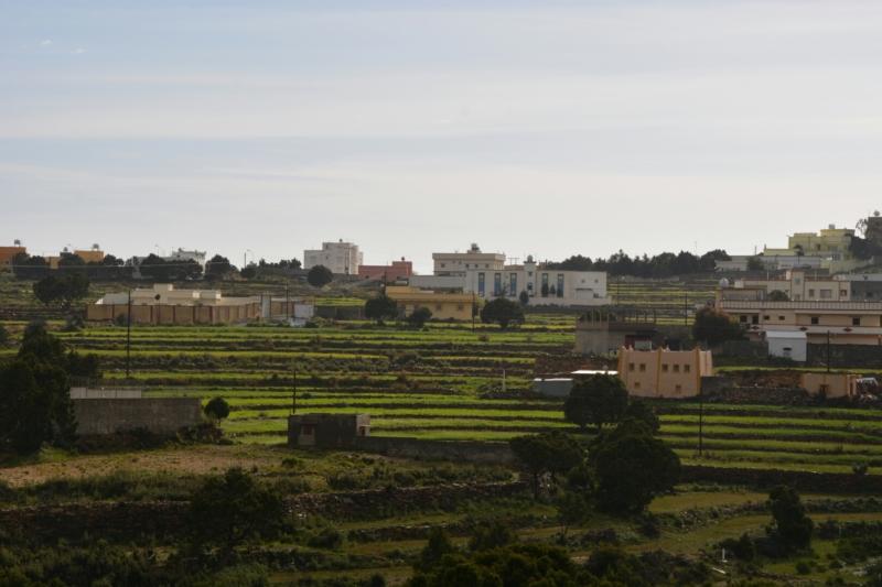 المدرجات الزراعية بعسير تُشكل لوحة جمالية بعد هطول الأمطار (105246684) 