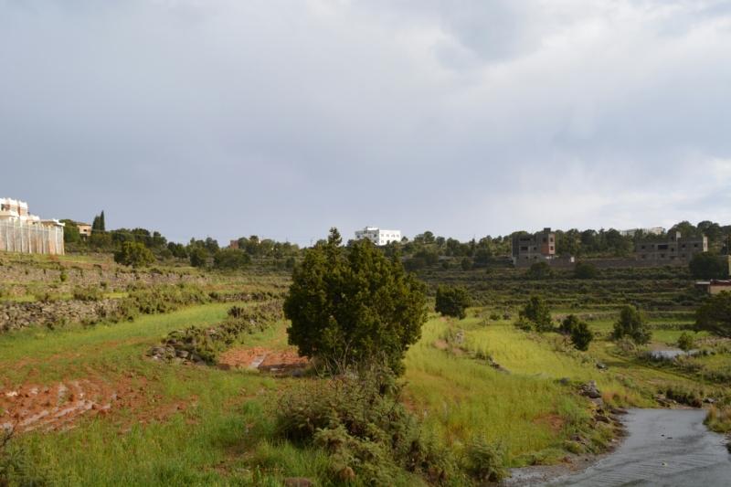 المدرجات الزراعية بعسير تُشكل لوحة جمالية بعد هطول الأمطار (105246686) 