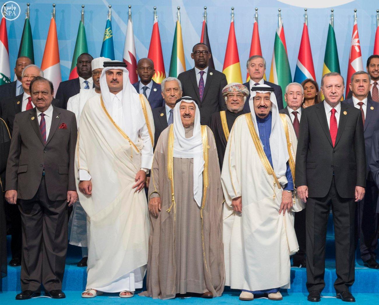 الملك سلمان بالقمة الاسلامية بتركيا (8)