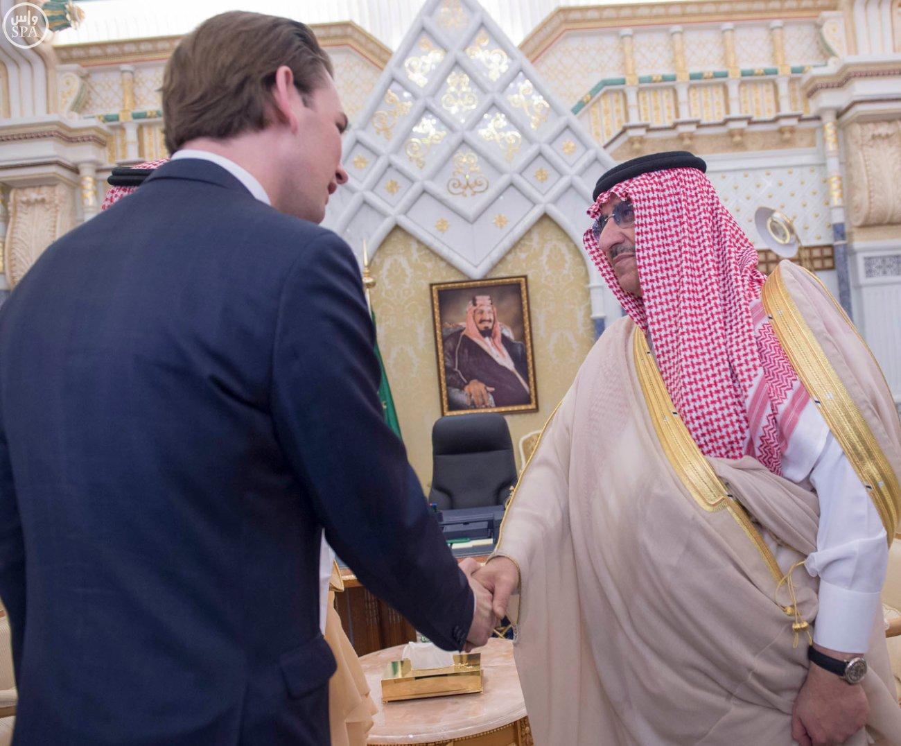الملك-سلمان-يستقبل-وزير-خارجية-النمسا (3)