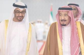 محمد بن زايد في ذكرى بيعة الملك سلمان : حافظ بحزمه على أمن المنطقة - المواطن